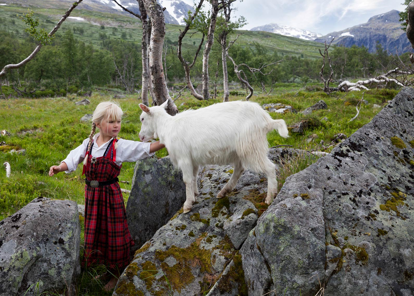 ANJA-AND-THE-GOAT_THE-TINY-WISH