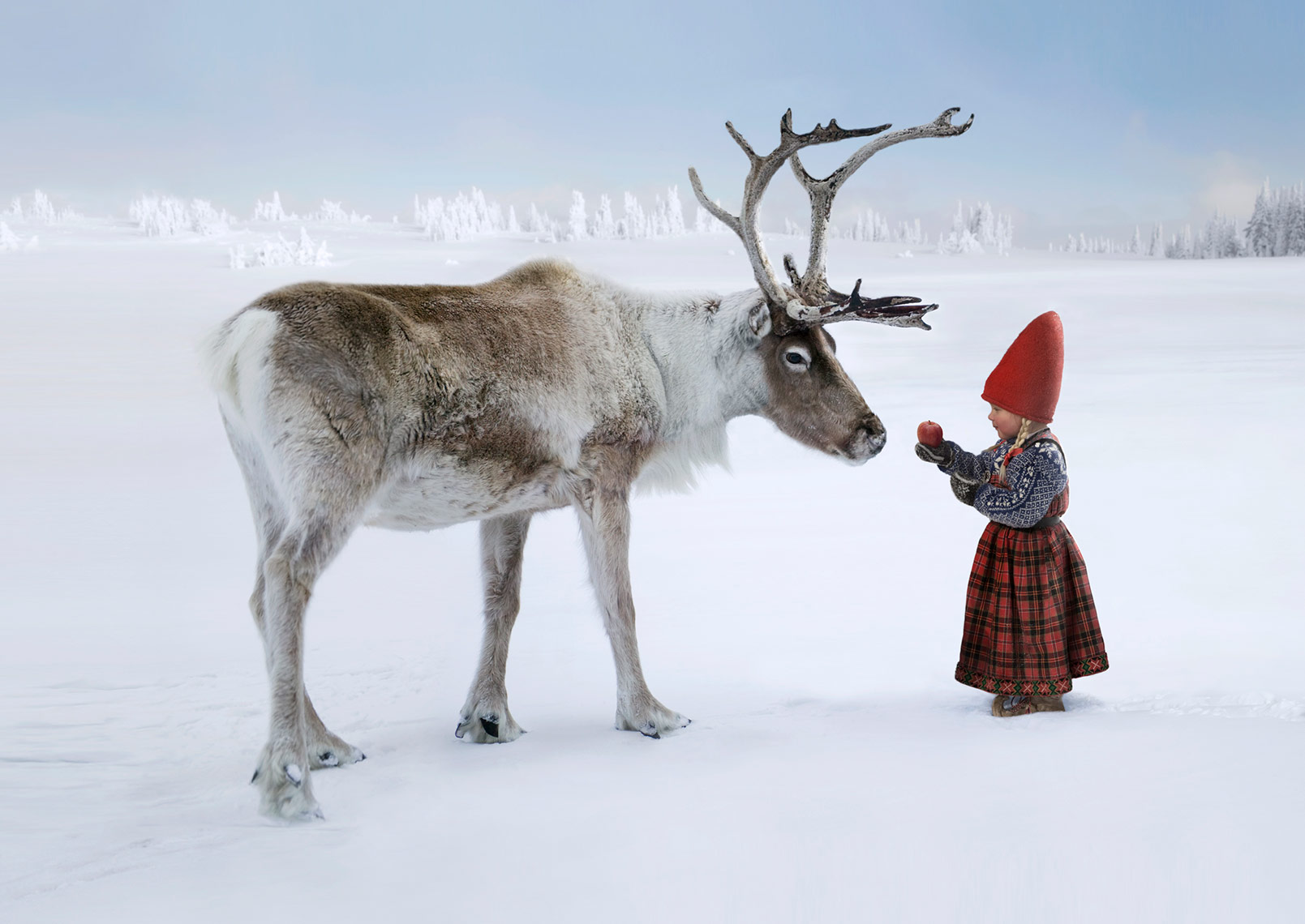 ANJA-AND-THE-REINDEER_THE CHRISTMAS WISH