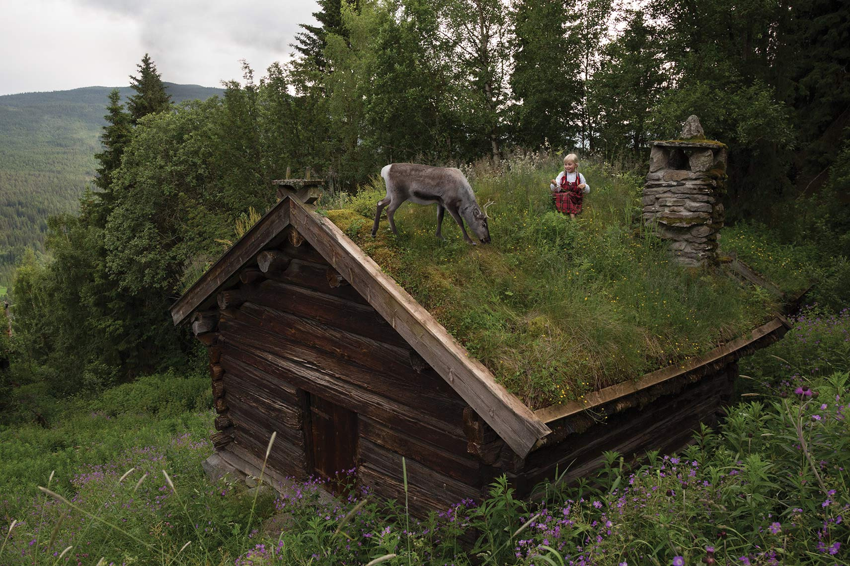 Anja-and-reindeer-on-the-roof_THE-REINDEER-WISH
