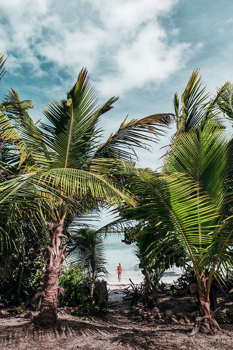EXUMA-PALM-WITH-RED-SWIMSUIT