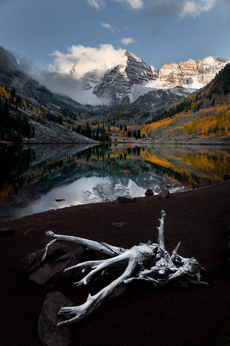 MAROON-BELLS-WITH-SNOWY-ROOT