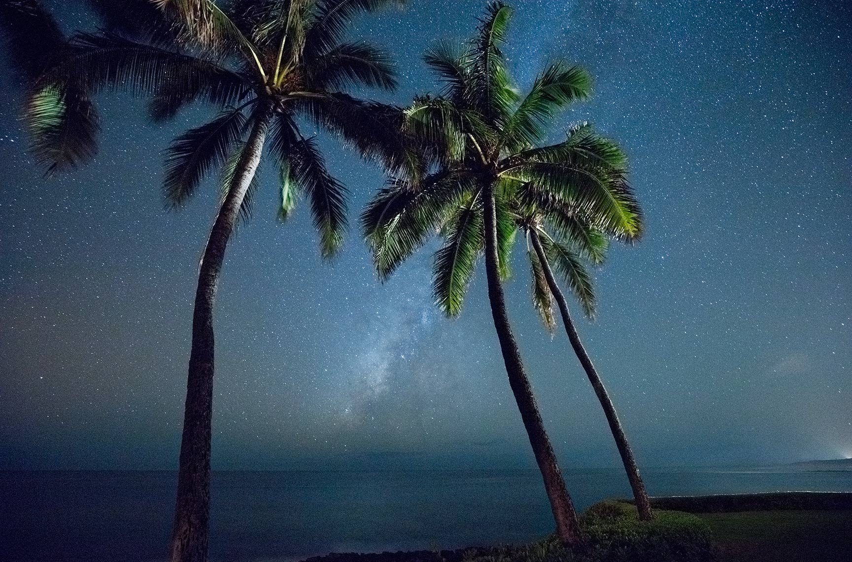MILKYWAY-PALMS_2