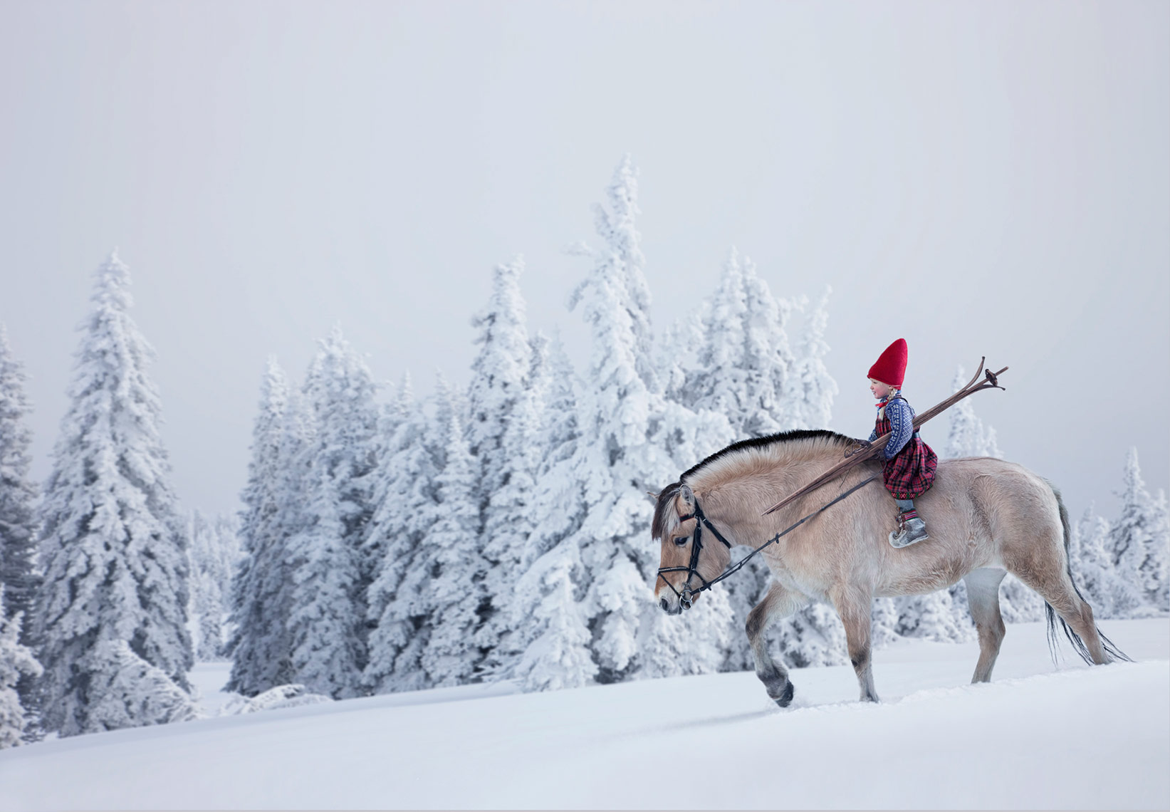 RIDING-JOTNE_THE-CHRISTMAS-WISH