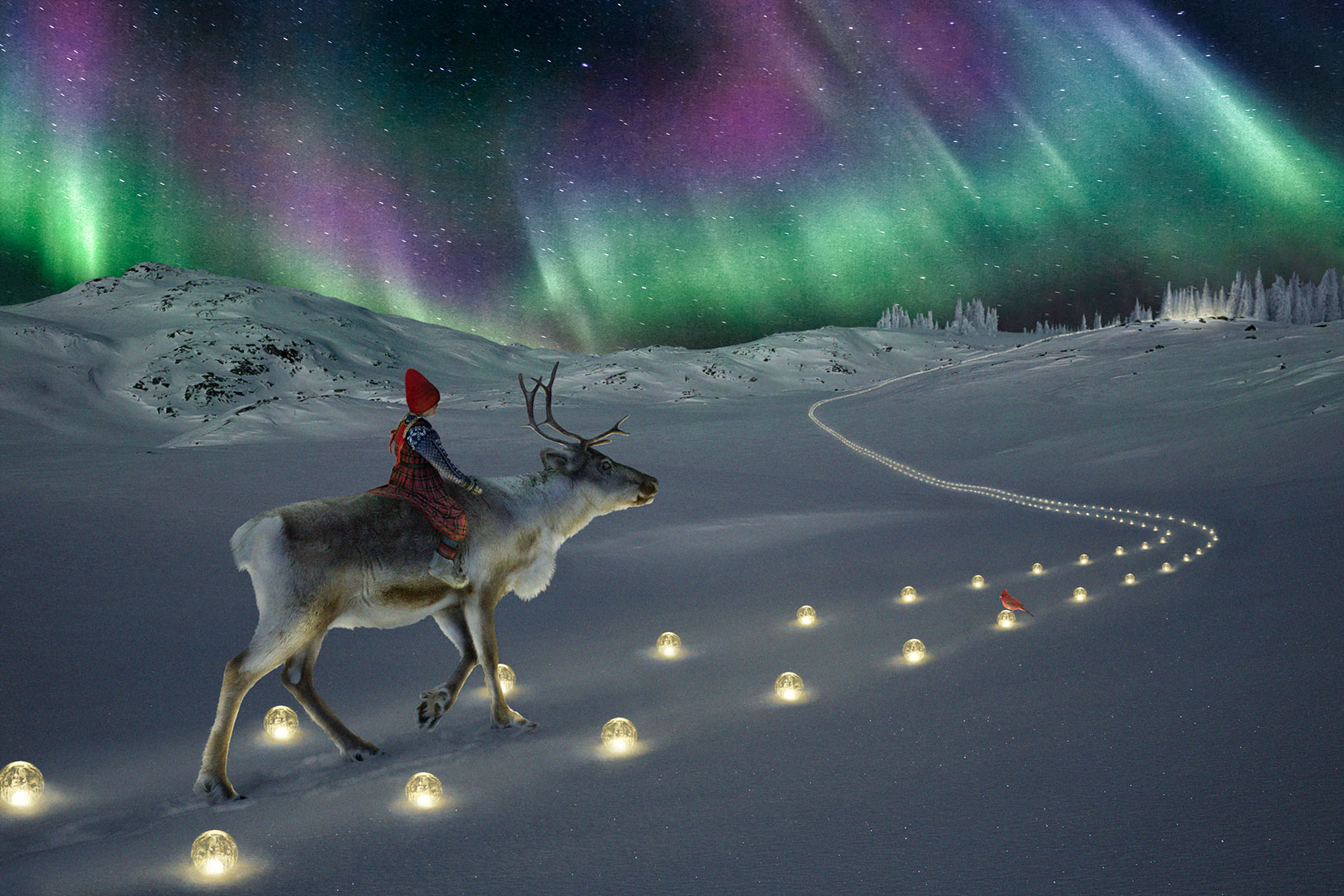 Riding-through-the-northern-lights_The-Reindeer-Wish
