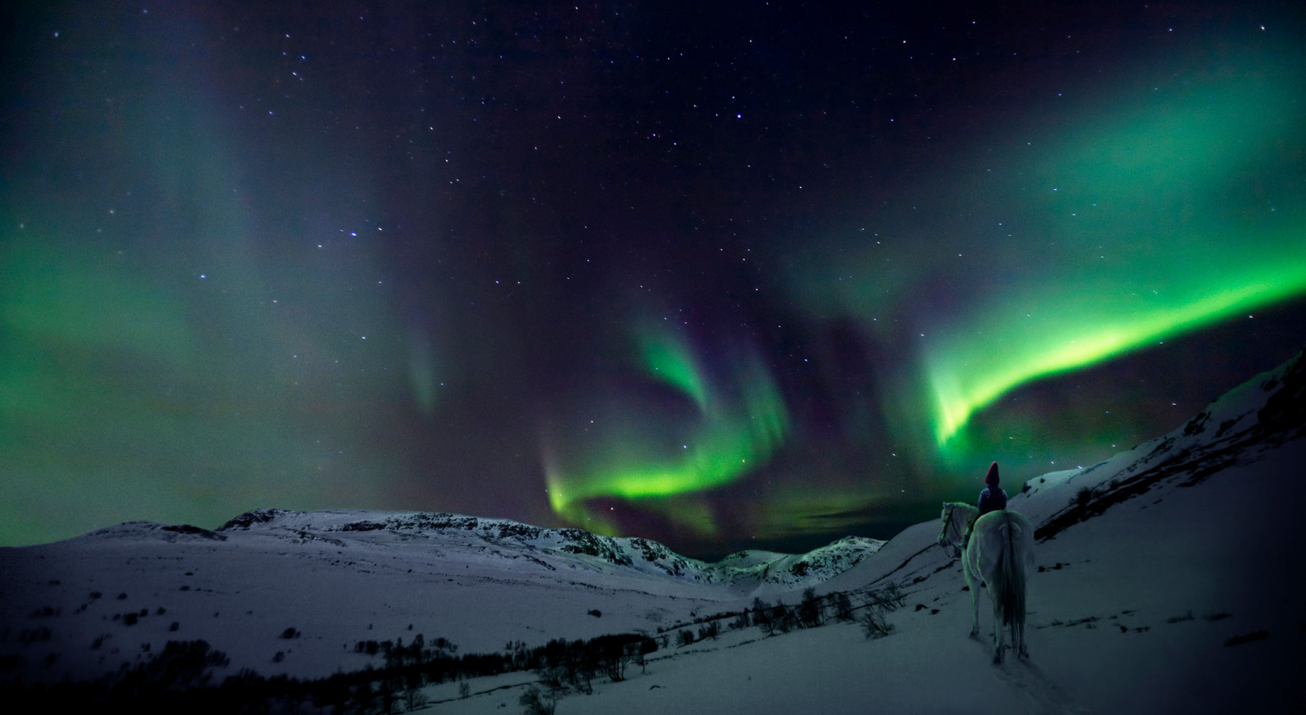 THE-NORTHERN-LIGHTS_THE-CHRISTMAS-WISH