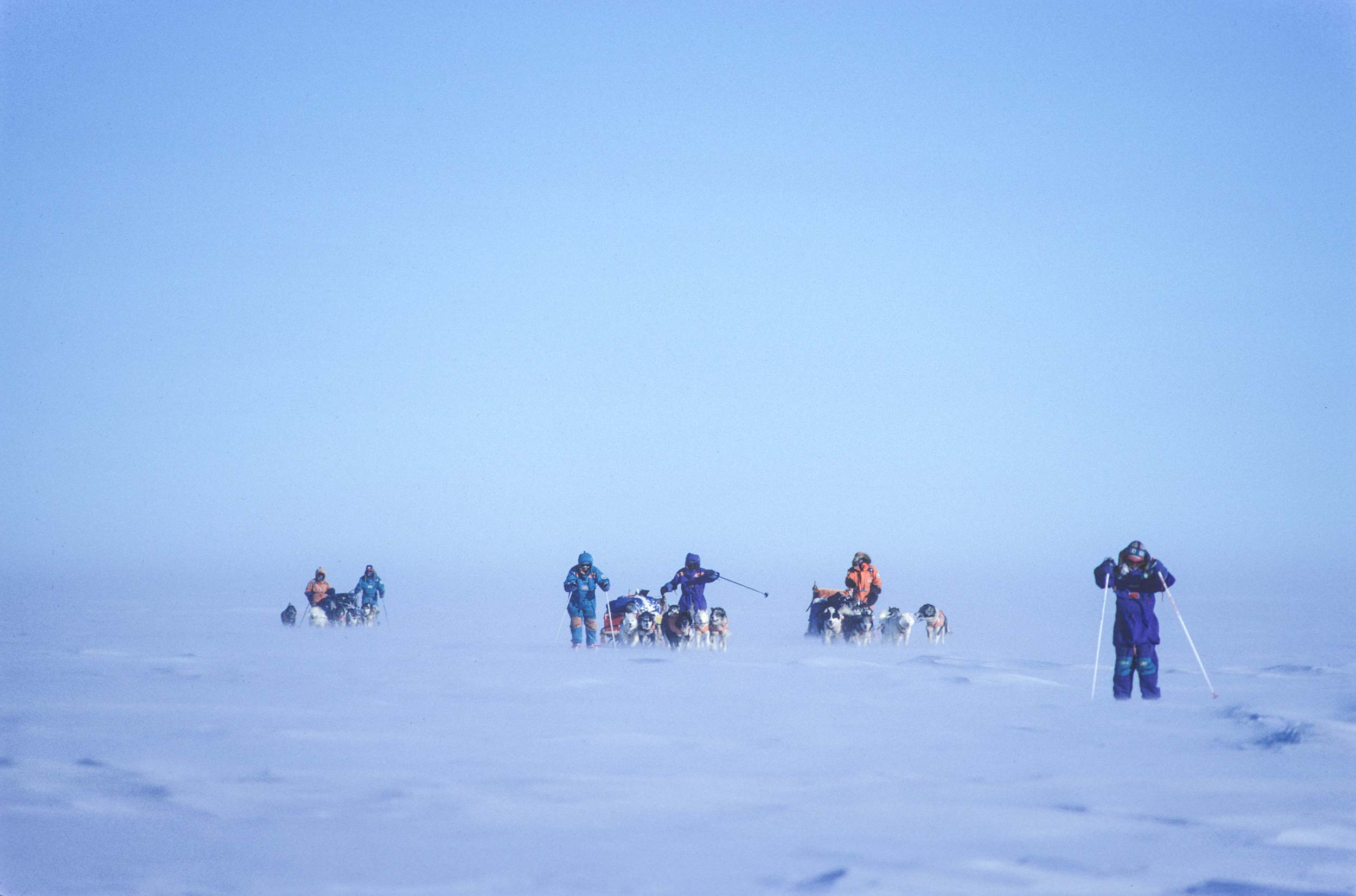 Trans-Antarctica-Expedition-dogsledding-through-the-white-room