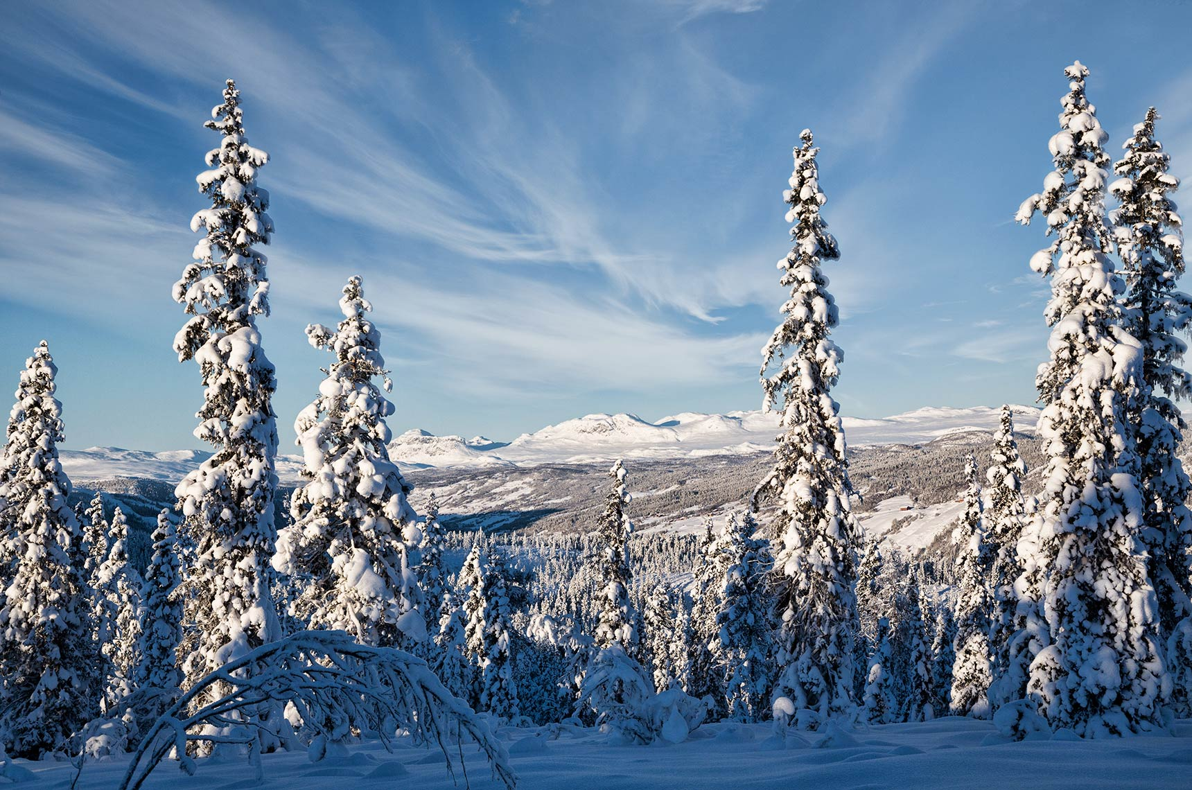WINTER-WONDERLAND_AAL_HALLINGDAL_NORWAY
