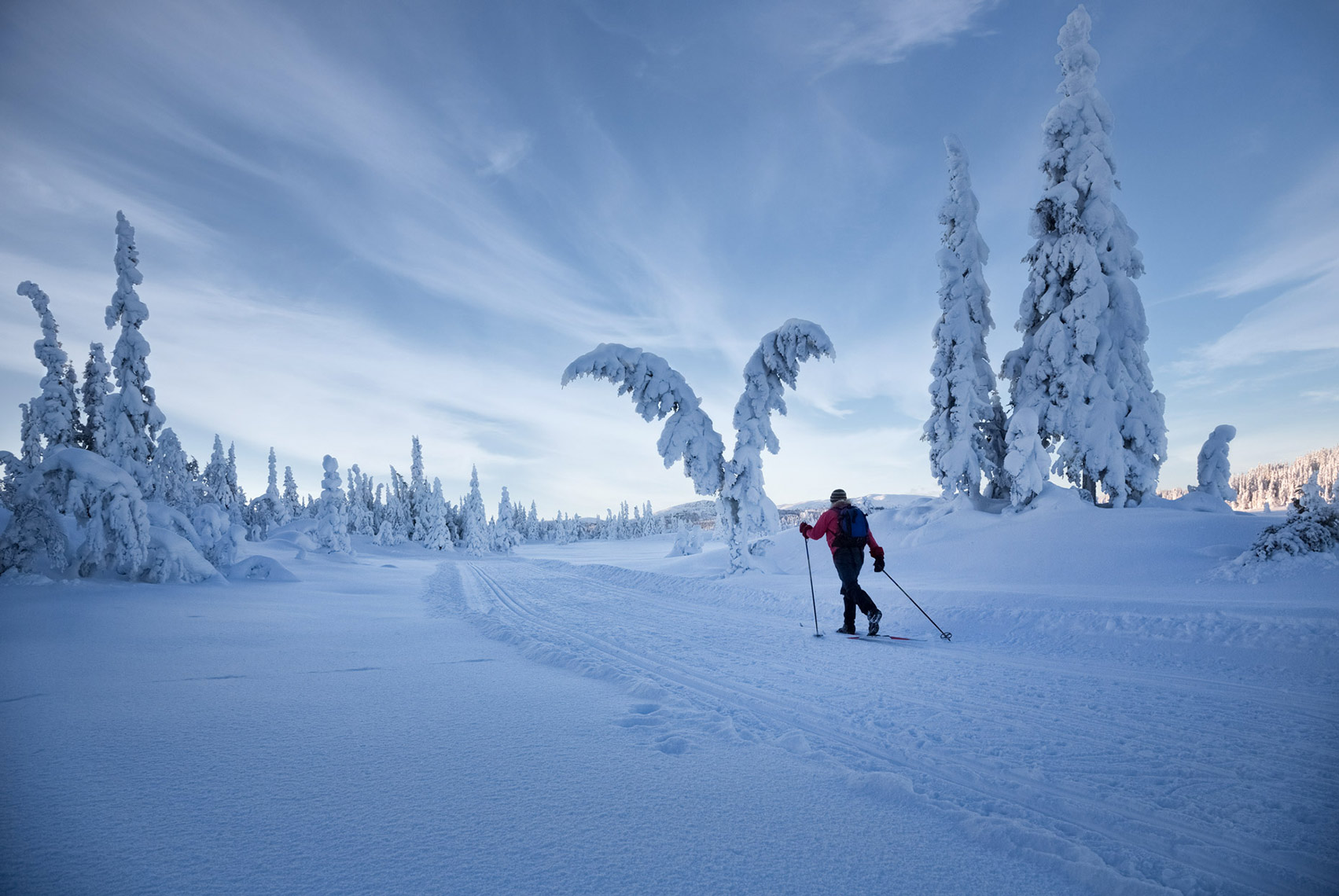 xc-skier-in-perfect-snow_norway